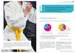 rapport-annuel4.jpg