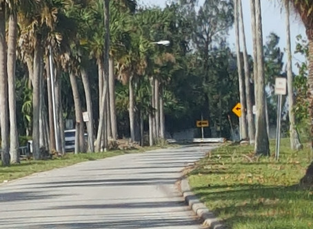 Why We Look To The Past