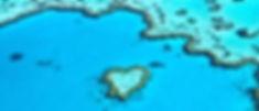 heartreef-1024x438.jpg