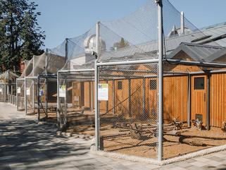 Детский зоопарк в Москве. Монтаж светильников наружного декоративного освещения.