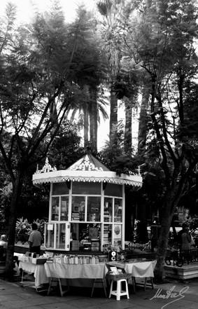Kiosco en Cádiz