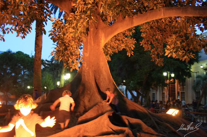 Noche en Cádiz