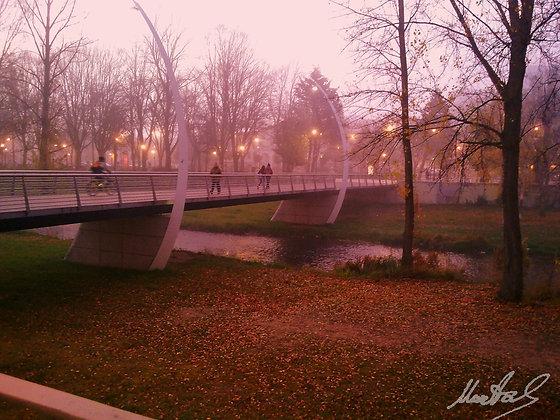 Puente - Burgos
