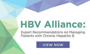 CLDF-20-09 HBV Alliance Webgear.jpg