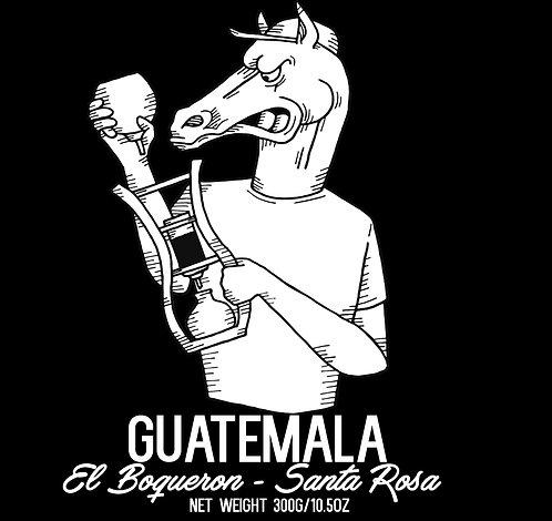 Guatemala - El Boqueron - Santa Rosa - Natural