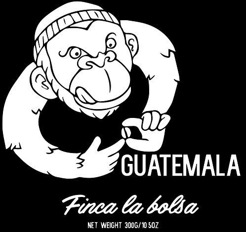 Guatemala - Finca La Bolsa