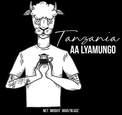 Tanzania - AA Lyamungo