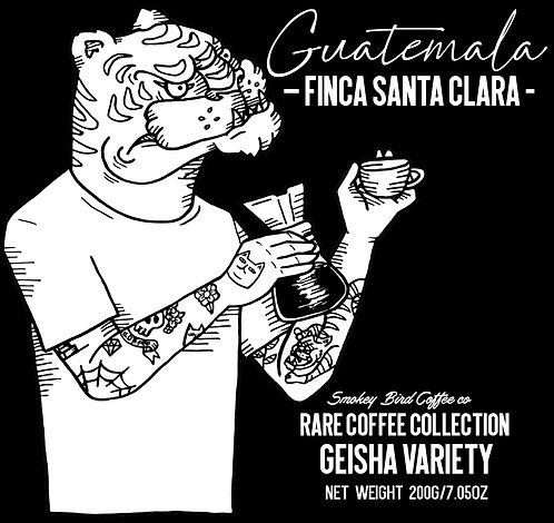 Guatemala - Guatemala –Finca Santa Clara - 100% Geisha