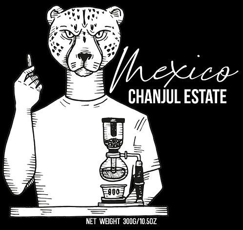 Mexico - Chanjul Estate
