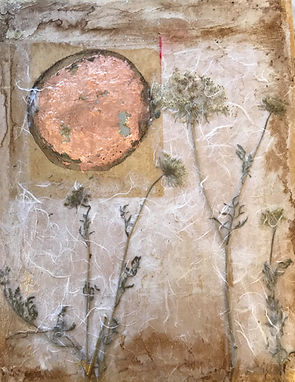 """Currently showing at Volta Gallery   http://www.voltaglass.com/     Queen Anne's Lace I  11""""x14"""" Watercolor, dyes, Sumi ink, acrylic medium, Japanese handmade papers, Unryu papers, maple panel board, Queen Anne's Lace collected in the Columbia River Gorge, Oregon $495."""