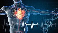 male heart - iStock-1210336572 - purchas