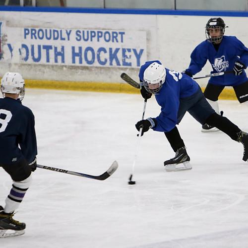 The Hockey Kid