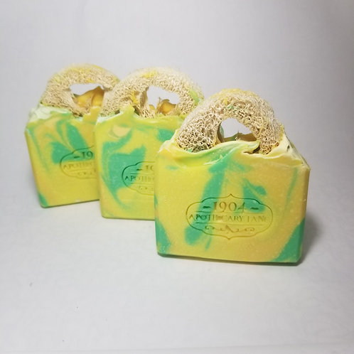 Ginger Lemongrass Loofah Soap