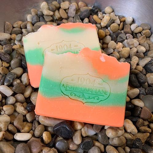Sea Salt & Cactus Bar Soap
