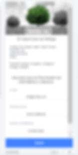 Formulaire_Facebook_Ads_Leads_-_Google_t