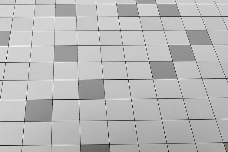 DSC_0848noirblanc.jpg