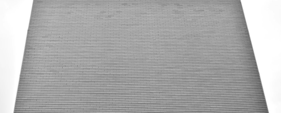brique nb 1.jpg