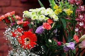 Flores de corte é o segmento da floricultura mais afetado pela pandemia
