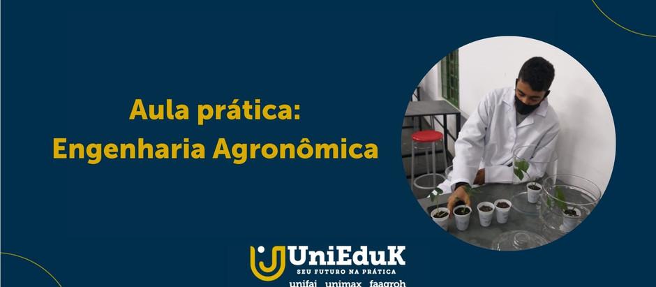 Alunos de Engenharia Agronômica do Grupo UniEduK participam de aula prática sobre Fisiologia Vegetal