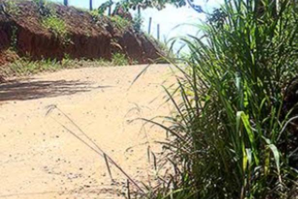 Prefeitura leva asfalto ao bairro Camanducaia