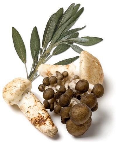 Wild Mushroom & Sage Infused EVOO