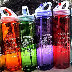 Best BPA free water bottle ever. Flip top lid, easy grab and go handle, straw, wide mouth opening for easy hand wash cleaning.  Cheryl Myers mypositivewater.com