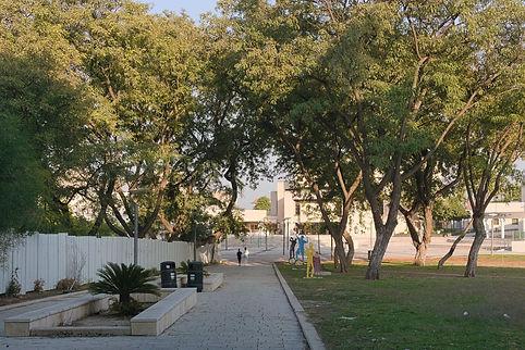 Qiryat Gat park
