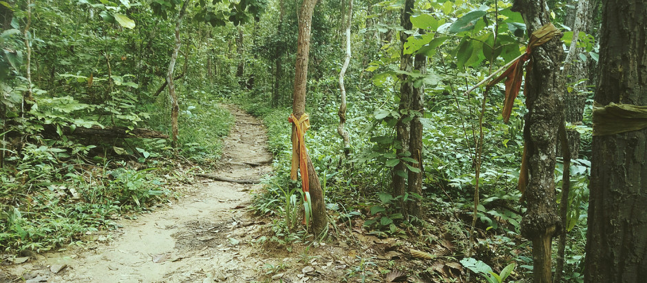 KindaMindful In Chiang Mai : The Lost  Path