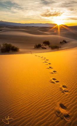 Steps Towards Sunrise