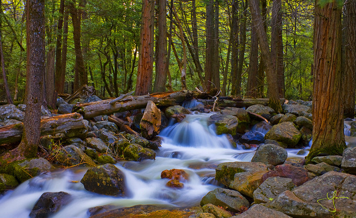 Flow of Bridalveil Creek