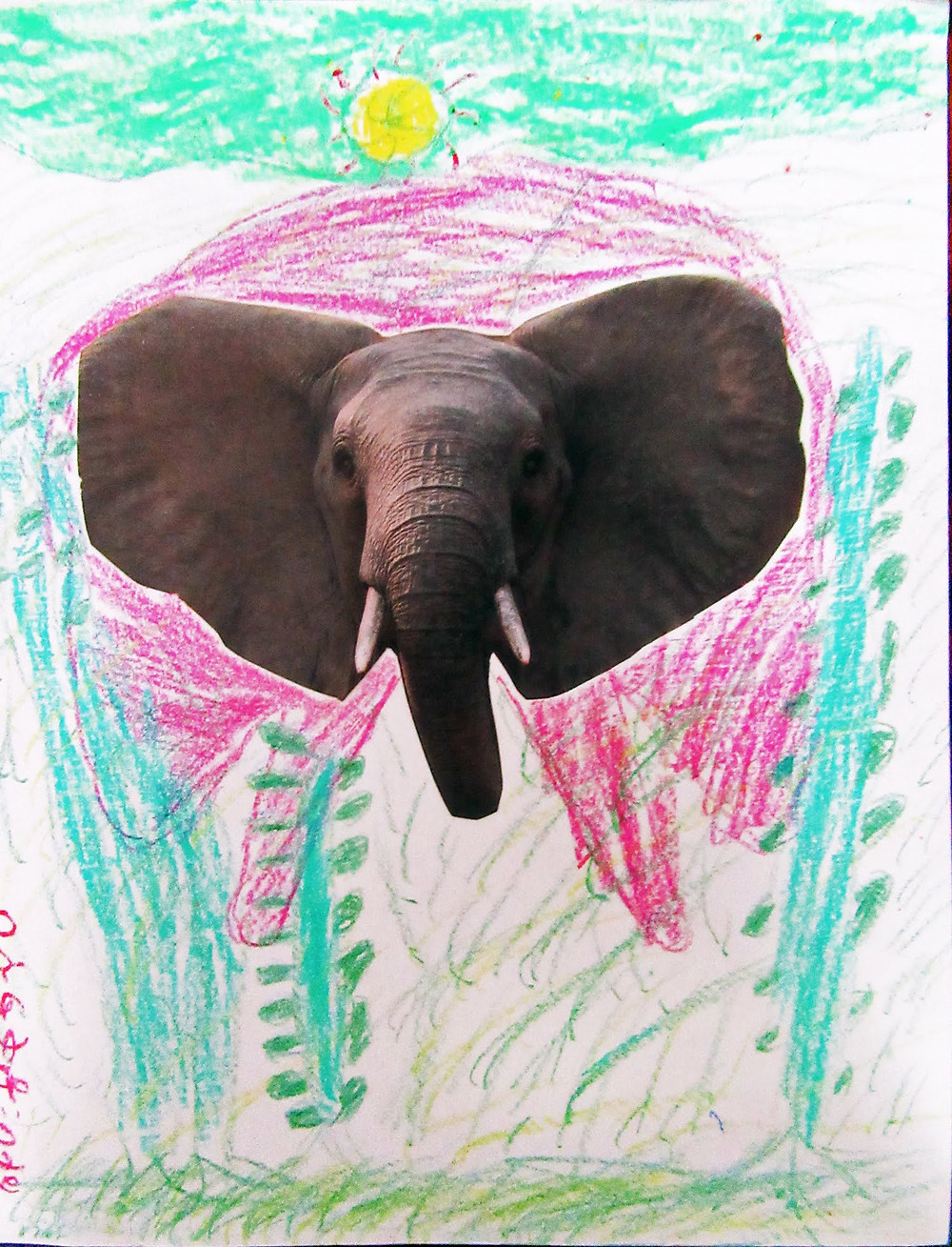 Artist continued the drawing by continuing elephants body and giving it a habitat.