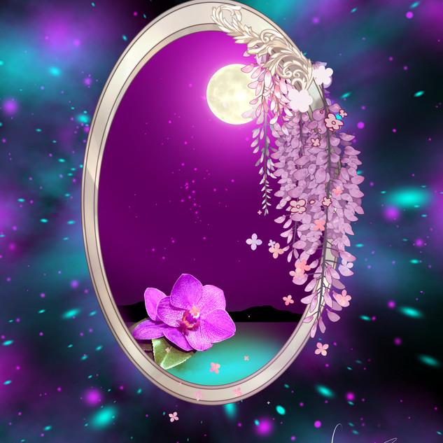 Orchidee Vollmondnacht