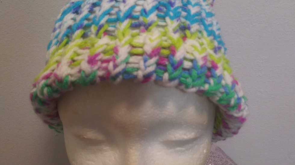 Mulit-colored adult beanie