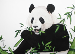 Chang - Chinese Giant Panda | Commissioned
