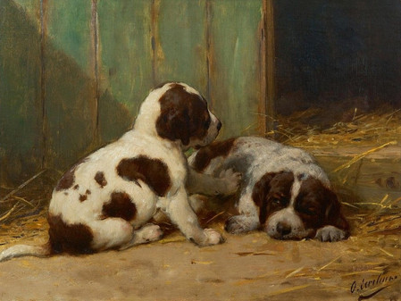 Old Dutch breeds | Part 2: To keep them alive...