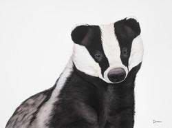 Hufflepuff - European Badger | €450