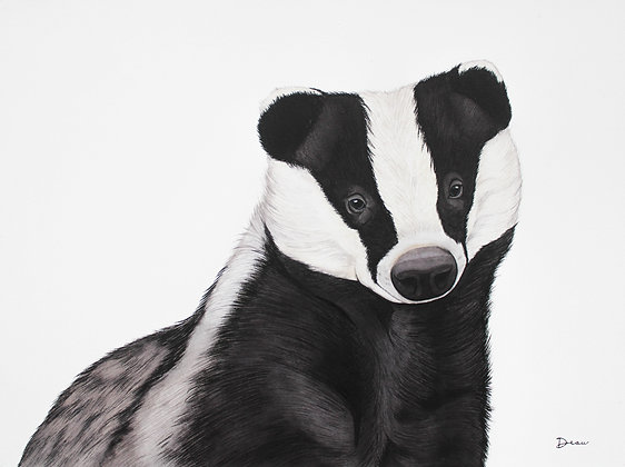 Hufflepuff - European Badger
