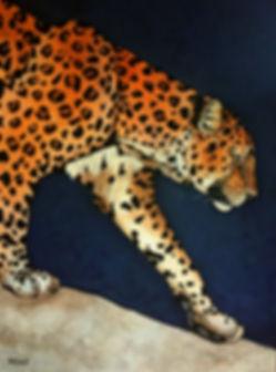 African Leopard, canvas, DEAU Fine art - animal artist