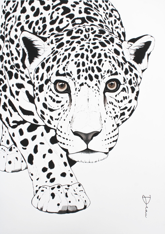 Brazilian Jaguar BW | €1200
