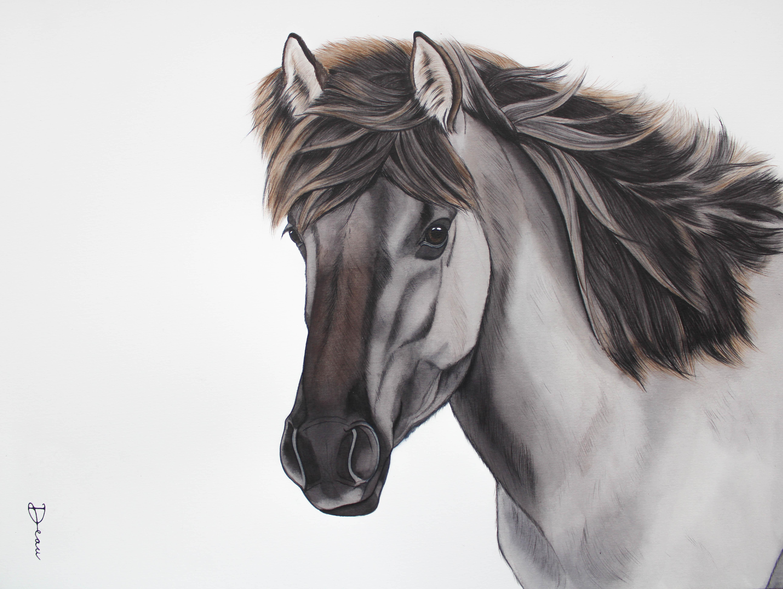 Michiels Konik Horse