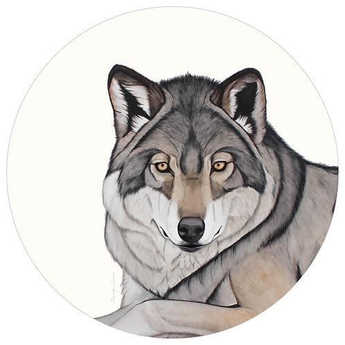 MUURCIRKEL - EUROPESE WOLF