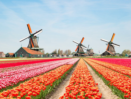 Nederland: Het kan hier zo mooi zijn!