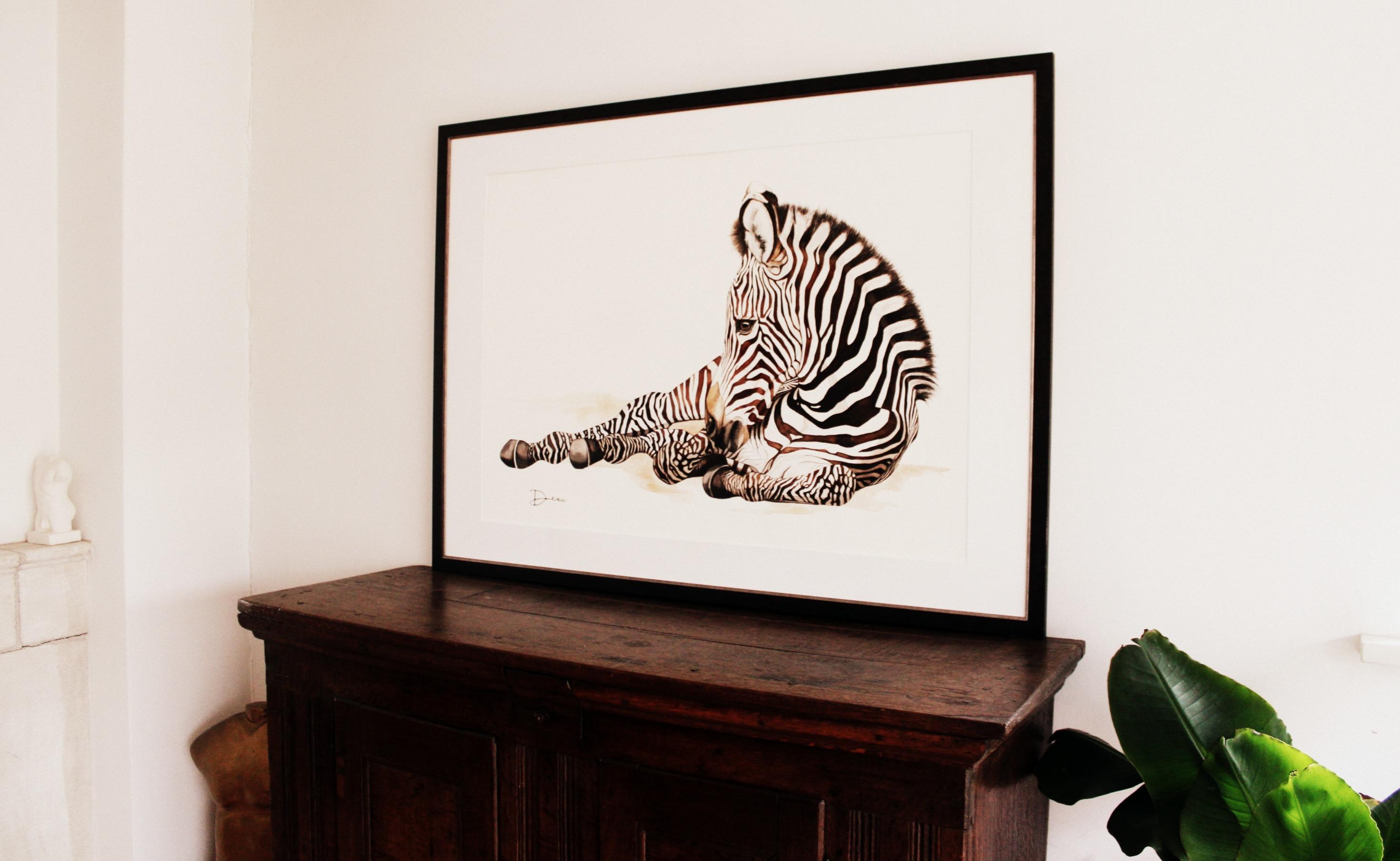 Grévy's Zebra Foal - Interior Context