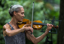 Street Violinist Central Park NYC