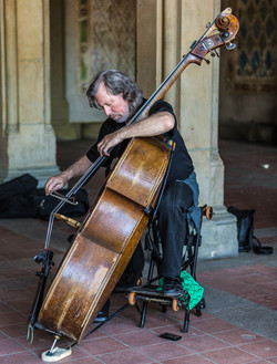 Cello Player in NYC Central Park