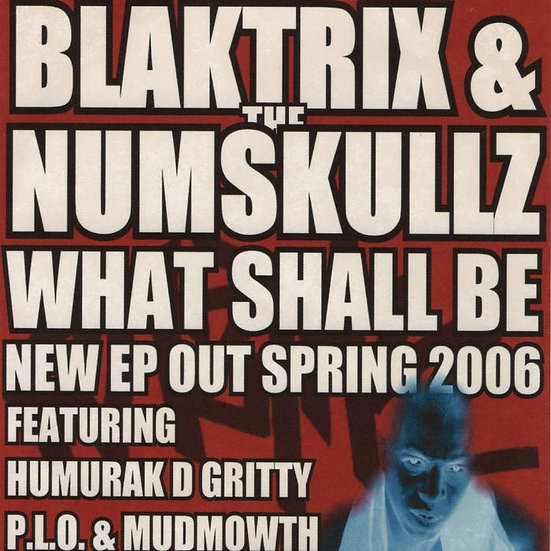 Blaktrix & The Numskullz - What Shall Be EP