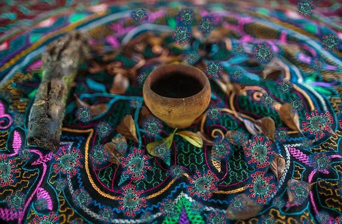 ayahuasca-beautiful - Sacred - Plant.jpg