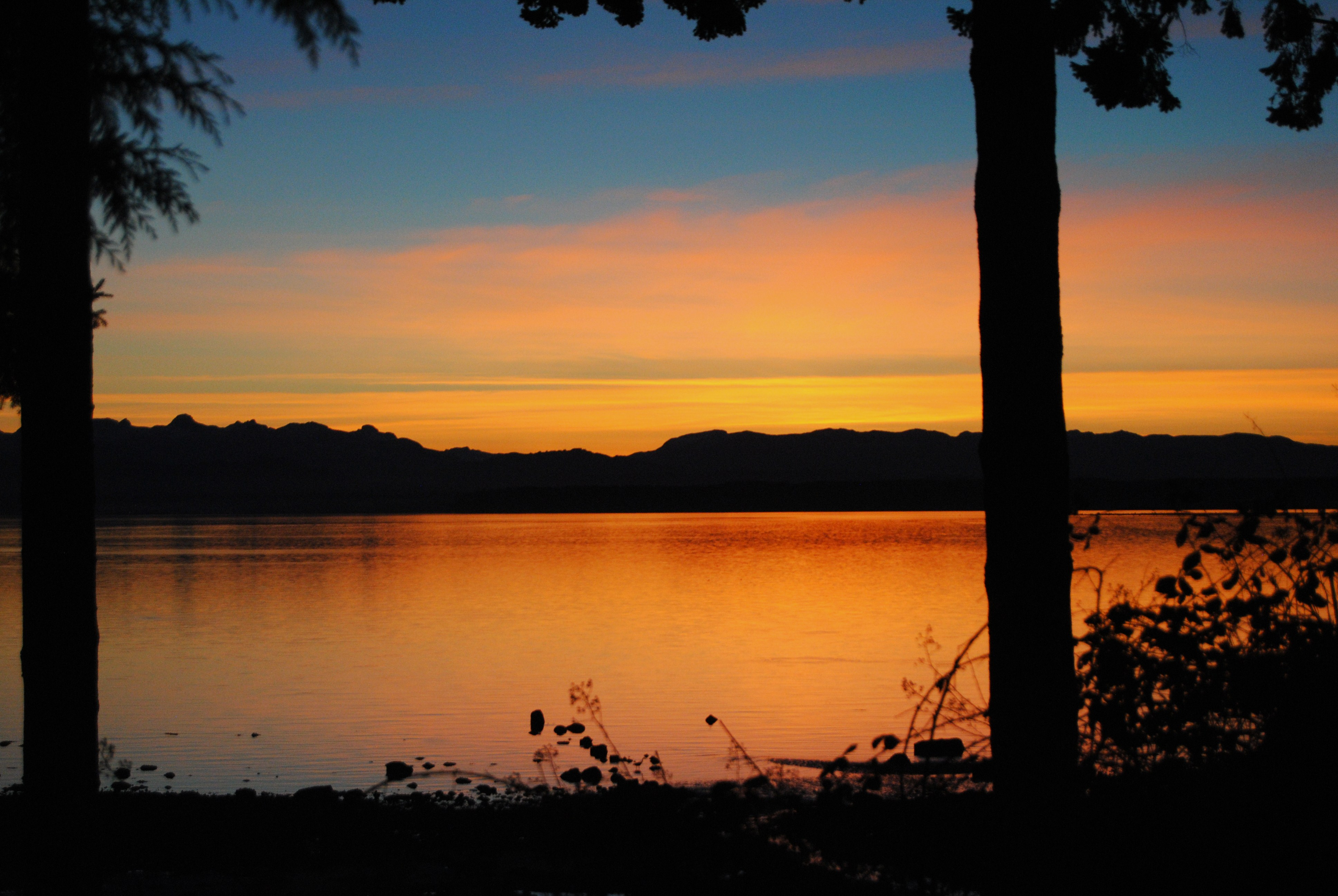 view-colours orange.JPG