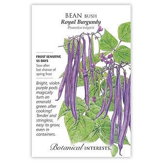 Bean Bush Royal Burgundy