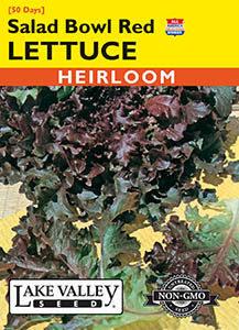 LETTUCE SALAD BOWL RED  HEIRLOOM